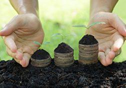 Zwei Hände halten Erde und drei Pflanzensetzlinge