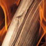 DAs richtige Holz ist beim Einheizen entscheidend.